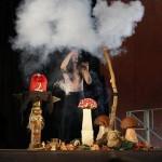 Sirius l'illusionniste - Magie du chamane